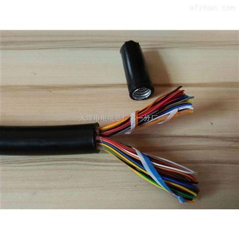 加工DJFGP系列硅橡胶护套计算机电缆