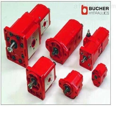原裝正品德國Bucher液壓閥泵特價供應-100