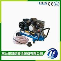 科尔←奇潜水低压空气压缩机EOLO330/SH