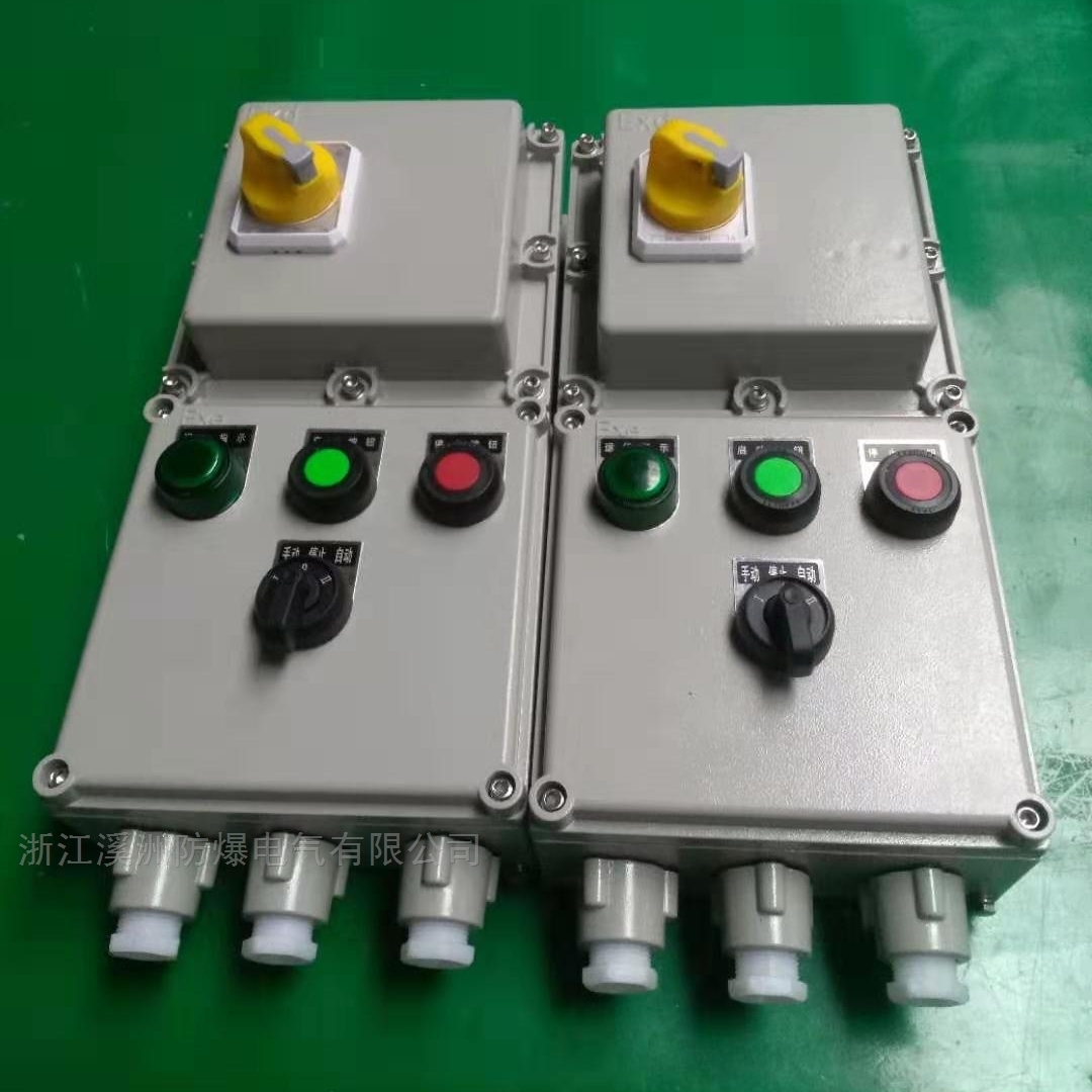 防爆磁力启动器2路电机带远控
