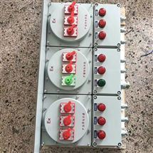 BXMD炼化厂IIC级防爆照明配电箱