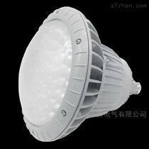 FGV6238_LED免維護節能防水防塵防腐投光燈
