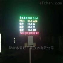 麗江旅游區負氧離子空氣在線監測溫濕度