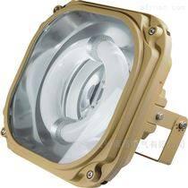 FGA6140-QL_免維護節能防水防塵防腐泛光燈
