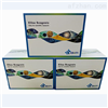 IL-1β,BIM大鼠白细胞介素elisa试剂盒厂家