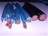 (YCW耐气候电缆型号规格)
