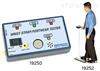 COMBO防静电手腕带/工作鞋测试仪